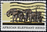 UNITED STATES OF AMERICA -CIRCA 1970: A stamp printed in USA shows a picture of African Elephant Herd, circa 1970 — Foto Stock