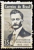 BRAZIL - CIRCA 1965: A stamp printed in Brazil shows Pessoa, circa 1965 — Stock Photo