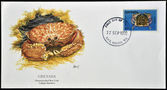 гренада - около 1990: открытки напечатаны в гренаде показывает flamestreaked коробка краб, callapa flammea, около 1990 — Стоковое фото