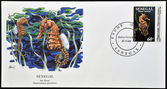 SENEGAL - CIRCA 1989: A stamp printed in Senegal shows sea horse, hippocampus guttulatus, circa 1989 — Stock Photo