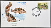 SAINT KITTS AND NEVIS - CIRCA 1991: A stamp printed in St Kitts shows a nassau grouper, circa 1991 — Stock Photo
