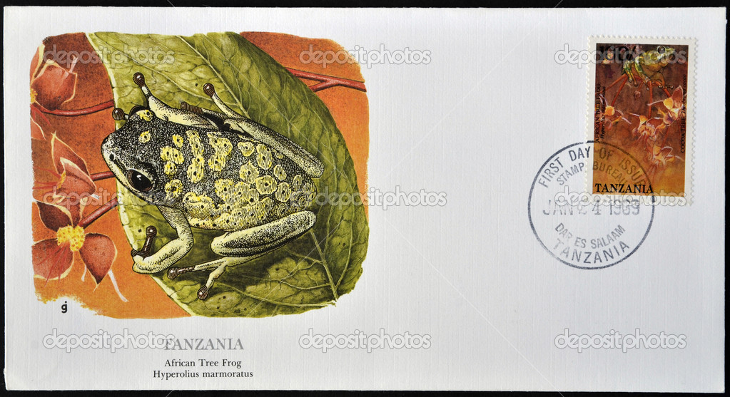 TANZANIA - CIRCA 1989: A stamp printed in Tanzania shows african tree frog, hyperolius marmoratus, circa 1989 — Stock Photo #9854802