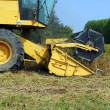 Stock Photo: Close up of yellow combine harvester in soy field