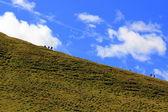 山、緑の芝生と曇り空を歩く — ストック写真