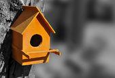 Orange bird house — Stock Photo