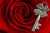 Key jewel on red rose petals — Stock Photo