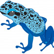 Vector blue frog — Stock Vector