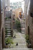 Pitigliano (Tuscany, Italy) — Stock Photo