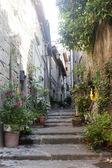 Viterbo, ciudad medieval — Foto de Stock