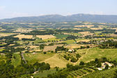 Country landscape in Umbria near Todi (Perugia) at summer — Stock Photo