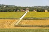Farm in Umbria — Stock Photo