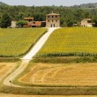 Stock Photo: Farm in Umbria