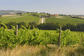Landscape in Umbria near Todi — Stock Photo
