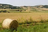 Krajina v umbrii poblíž foligno — Stock fotografie