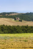 Farm in Val d'Orcia — Foto Stock