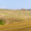Farm in Val d'Orcia (Tuscany) — Stock Photo #9725196