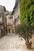 Certaldo (Florence) — Stock Photo