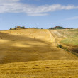 Farm in Val d'Orcia (Tuscany) — Stock Photo #9885147