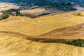 Landscape in Val d'Orcia (Tuscany) — Stockfoto