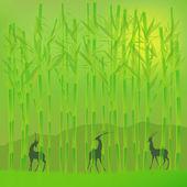 Bamboo grove — Stock Vector
