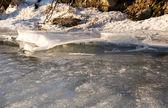Winter — Стоковое фото