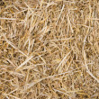 Royalty-Free Stock Photo: Straw Texture