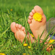 Stock Photo: Feet in green grass