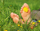 Feet in green grass — Stock Photo