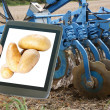 Potatoes and agriculture — Stock Photo