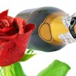 Stock Photo: Valentins Day