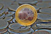 The Euro — Stock Photo