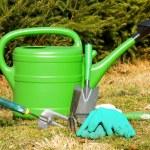 Gardening — Stock Photo #9632065