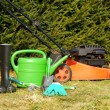 Garden tools — Stock Photo #9632282