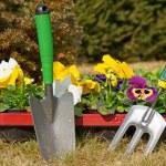 Gardening — Stock Photo #9632964