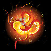 Chinese Fire Dragon — Stock Vector