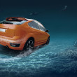 Motions car in underwater ocean life - Stock Photo