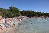 üzerinde murter hırvatistan adriyatik sahil slanica — Stok fotoğraf