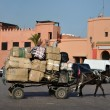 Stok fotoğraf: Transport with mule cart in Marrakech, Morocco