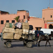 Transport with mule cart in Marrakech, Morocco — Zdjęcie stockowe #8016345