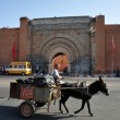 Bab Agnaou - one of the nineteen gates of Marrakech — Stock Photo