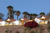Colorful houses on Canary Island Fuerteventura, Spain — Stock Photo