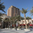 Palm Trees at at The Pearl promenade in Doha, Qatar — Foto de Stock