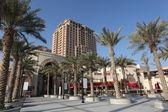 Palm Trees at at The Pearl promenade in Doha, Qatar — Stock Photo