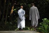 Buddhist monks walking in Tian Tan Monastery — Stock Photo