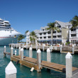 Cruise Ship in Key West, Florida Keys, USA — Stock Photo #9341931