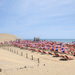 Maspalomas beach in Grand Canary Island — Stock Photo