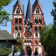 Cathedral in Limburg (Limburger Dom), Hesse Germany — ストック写真