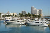 Motor Yachts at Miami Bayside Marina, Florida USA — Stock Photo