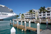 Cruise Ship in Key West, Florida Keys, USA — Stock Photo
