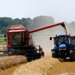 Combine harvester at the wheat field - Stock Photo